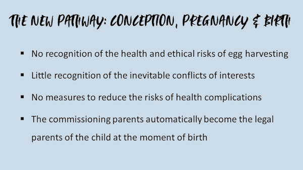 The New Pathway: Conception, pregnancy and birth