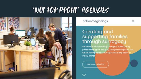 Not for profit agencies